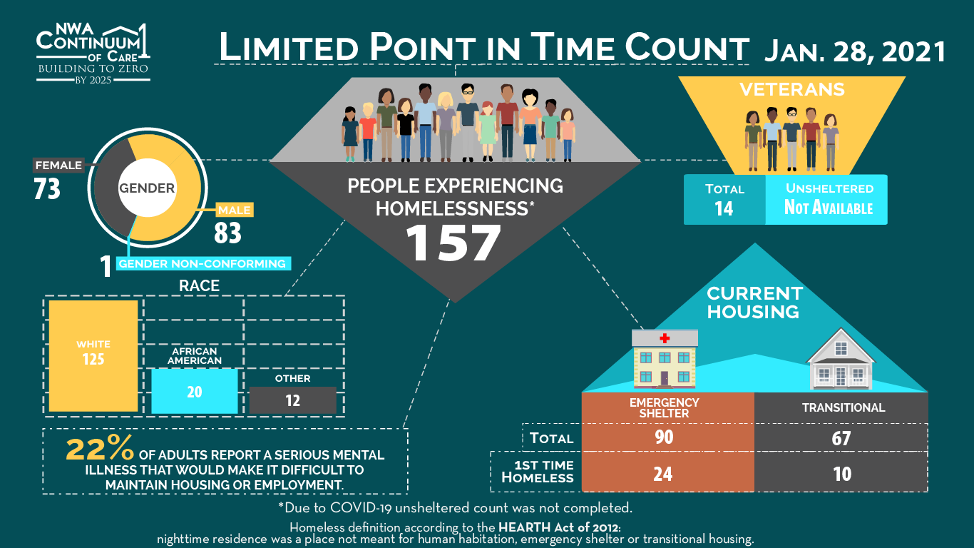Point in time count of homeless overview